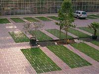 reitplatz reitplatzplatten reitplatzbau auslaufbefestigung offenstall paddock. Black Bedroom Furniture Sets. Home Design Ideas